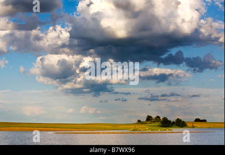 Flooded farm fields in Southern Wisconsin - Stock Photo