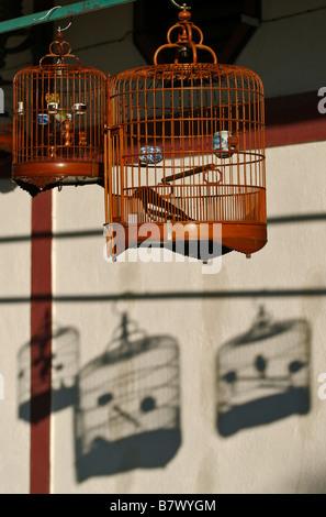 Bird cages hanging in Hong Kong's Bird Market - Stock Photo