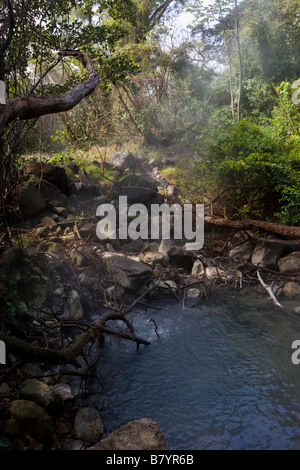 Steam and gases rise from volcanic mud pool in the forest at Rincon de la Vieja National Park in Guanacaste Province, - Stock Photo