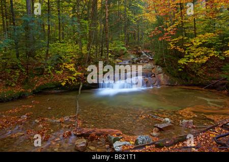 Fall scene near the Basin in Franconia Notch State Park New Hampshire - Stock Photo