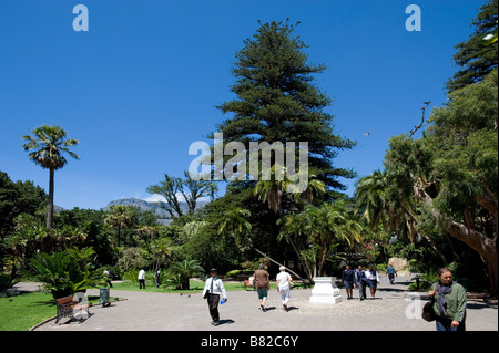 The Company's Garden Cape Town South Africa - Stock Photo
