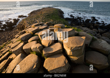 Causeway to Scotland. Hexagonal columns of basalt glow in the afternoon sun as they step down toward the crashing - Stock Photo