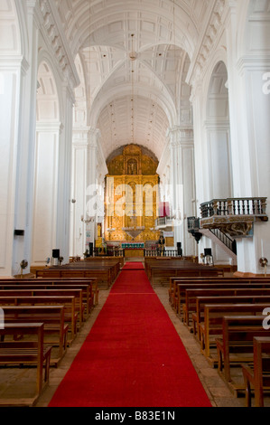 Se Cathedral in Old Goa India - Stock Photo