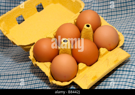 French carton / box of 6 large fresh eggs. - Stock Photo