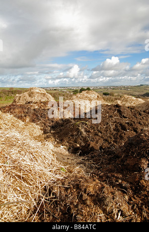 mounds of manure in fields near bristol,england,uk - Stock Photo