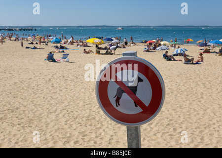 'no dogs' allowed sign, Beach, Arcachon, Gironde, France - Stock Photo