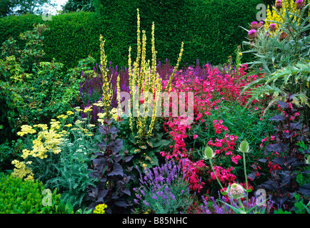 Colourful exotic flowering herbaceous border at Great Dixter - Stock Photo