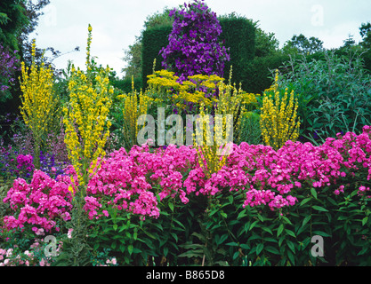 Colourful summer flowering herbaceous border at Great Dixter - Stock Photo
