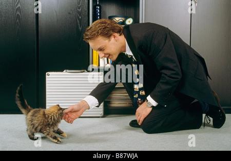 Business man fondling domestic cat kitten - Stock Photo