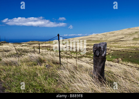 A field and an old fence trail off into the distant ocean near Waimea on the Big Island in Hawai'i. - Stock Photo