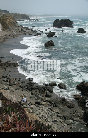 View of Carmet Beach, Sonoma Coast State Beach on the Pacific Coast Highway, Route 1, California. - Stock Photo