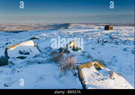 A winter scene with bare trees under a canopy of snow lit by a ...