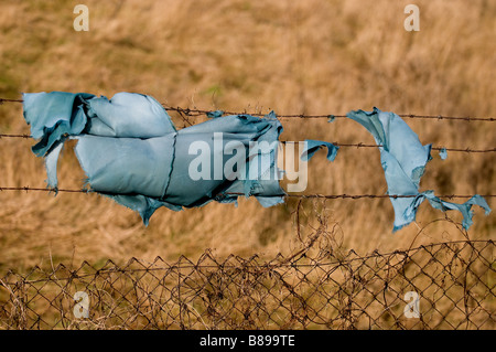 A fragment of blue cloth hanging on a barbed wire fence. - Stock Photo