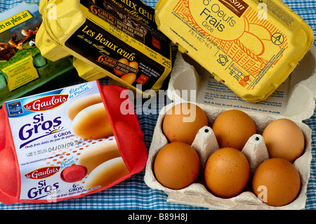 Assorted French cartons / boxes of 6 large fresh farm eggs. - Stock Photo