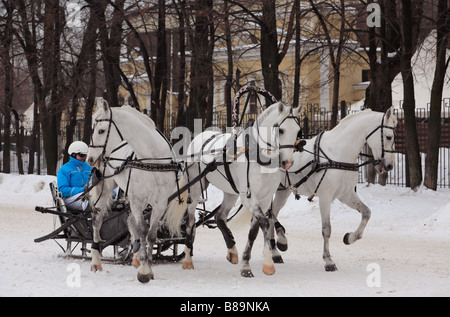 Troika drawn by three horses in Moscow hippodrome, Russia - Stock Photo