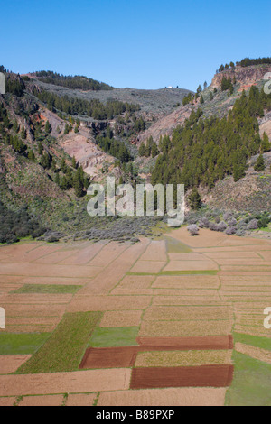 Cultivated fields in volcanic crater on Gran Canaria in The Canary islands - Stock Photo