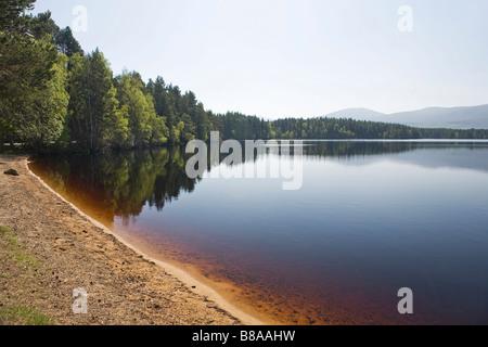 Loch Garten, Abernethy, Strathspey, Scottish Highlands, Great Britain - Stock Photo