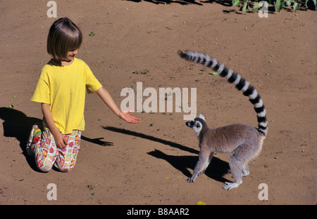 European Girl, 7 years old, and a Ring-tail Lemur, Lemur catta, near Fort Dauphin, south-east Madagascar - Stock Photo