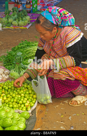 Flower Hmong woman in traditional dress at Coc Ly weekly market, Sapa, Vietnam - Stock Photo