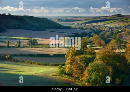 an autumn dawn nr Minterne Magna, Dorset, England, UK - Stock Photo