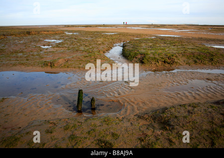View across salt marshes at Stiffkey, Norfolk, UK, with two old posts looking towards the sea at low tide. - Stock Photo