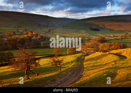 first light on the autumn colours at Arncliffe in Littondale, Yorkshire Dales National Park, England, UK - Stock Photo