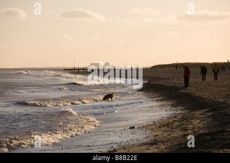 walkers on Southwold beach in winter evening afternoon sun light with Sizewell nuclear power station in distance - Stock Photo