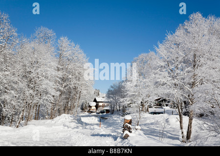 Bucheben Rauriser Sonnen Valley Austria Europe January Winter snow scene with trees covered in white hoarfrost after - Stock Photo