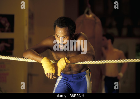 Boxer resting after training session - Stock Photo