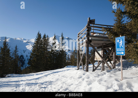 Rauris Austria Europe January Winterwanderweg cleared walking trail and sign high in Austrian Alps with snow in - Stock Photo