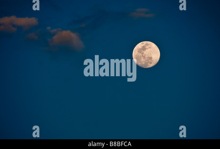 Full moon in the tropics - Stock Photo