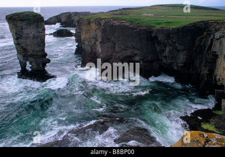 YESNABY CLIFFS AND THE CASTLE OF YESNABY SEA STACK ON MAINLAND ORKNEY S ATLANTIC COASTLINE JULY - Stock Photo