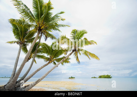 Fakarava island - Stock Photo