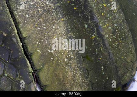 Stack of leaning old worn truck tyres covered with mould. - Stock Photo