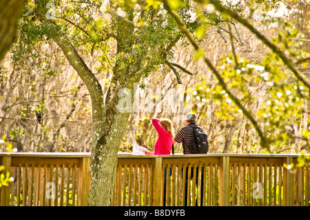 Florida Everglades couple on boardwalk at H P Williams Roadside Park Big Cypress National Preserve Florida - Stock Photo