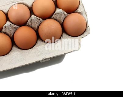 Open Carton of fresh Brown Organic Eggs - Stock Photo