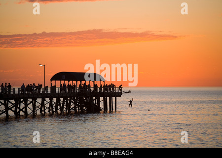 Jumping off Henley Pier, Adelaide - Stock Photo