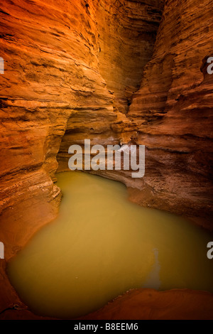 A small pool of water in the desert in Egypt - Stock Photo