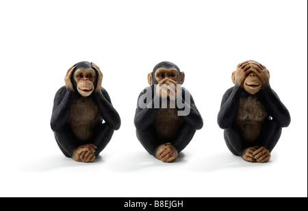 Studio shot of a three monkeys hear, see and speak no evil - Stock Photo