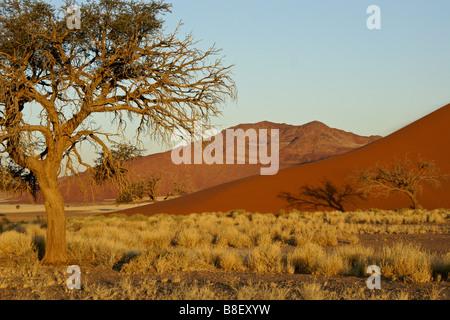 Dune 45 and mountain, Namib-Naukluft Park, Namibia - Stock Photo