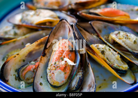 Fresh New Zealand Green Lipped Mussels barbequed with herbs and garlic butter - Stock Photo