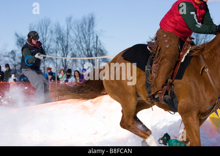A rider on horseback pulls a skier in a winter event known as skijoring, New Hampshire, USA - Stock Photo