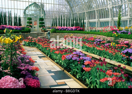 SPRING BLOOM DISPLAY AT THE COMO PARK CONSERVATORY IN ST. PAUL, MINNESOTA - Stock Photo