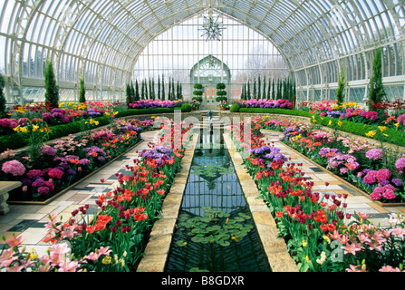 SPRING BLOOM DISPLAY AT THE COMO PARK CONSERVATORY IN ST. PAUL, MINNESOTA. - Stock Photo