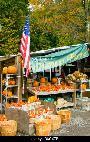 Alyce and Rogers Fruit Stand in Mount Tremper New York USA - Stock Photo