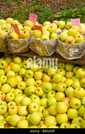 Baskets of green apples for sale at Alyce and Rogers Fruit Stand in Mount Tremper New York USA - Stock Photo