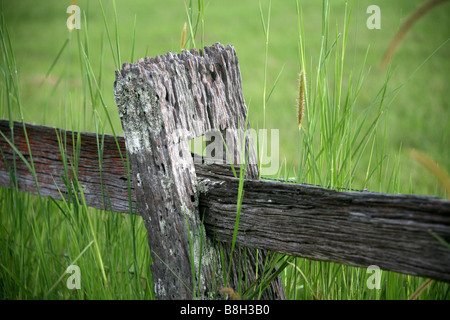 Post and rail fence - Stock Photo