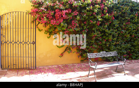 Mediterranean flowers with gate and bench - Stock Photo