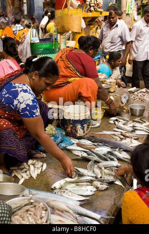 India Pondicherry Main Market stalls selling fresh locally caught fish - Stock Photo
