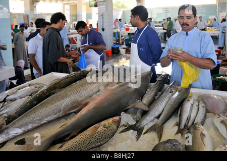 Fujairah fish market displays and vendors - Stock Photo